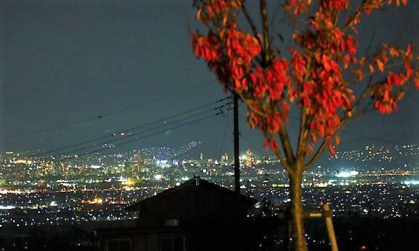 関東甲信の秋旅 八代ふるさと公園の夜景