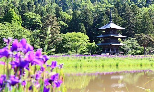 2021みちのく夏紀行 高畠町・安久津八幡神社・三重塔